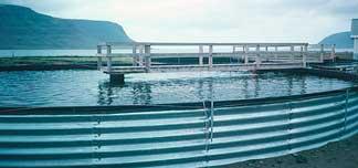 Impermeabilizzazioni in epdm centro dell 39 isolante for Vasche per allevamento ittico